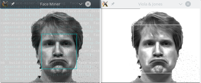 Facial recognition foss